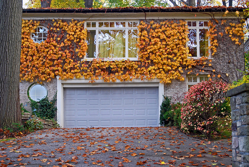 Fall Checklist to Save Money and Avoid Insurance Clai